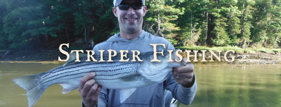 Striper Fishing
